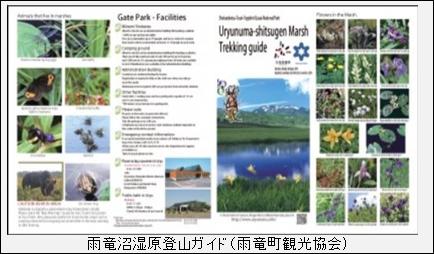 スピリチュアルな聖地、北海道のパワースポット🍀「雨竜沼」へ走る